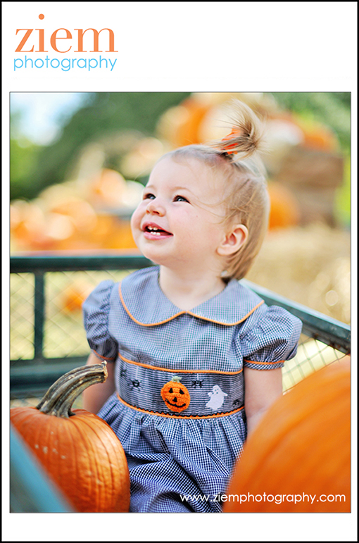 austin photographers | austin newborn photographer | family children | pumpkin patch photo tips