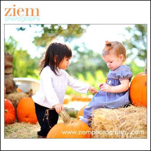 austin photographers | austin newborn photographer | family children | pumpkin patch photo tips