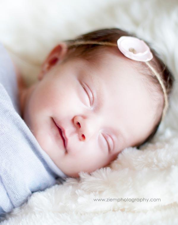 austin newborn photographer ziem photography