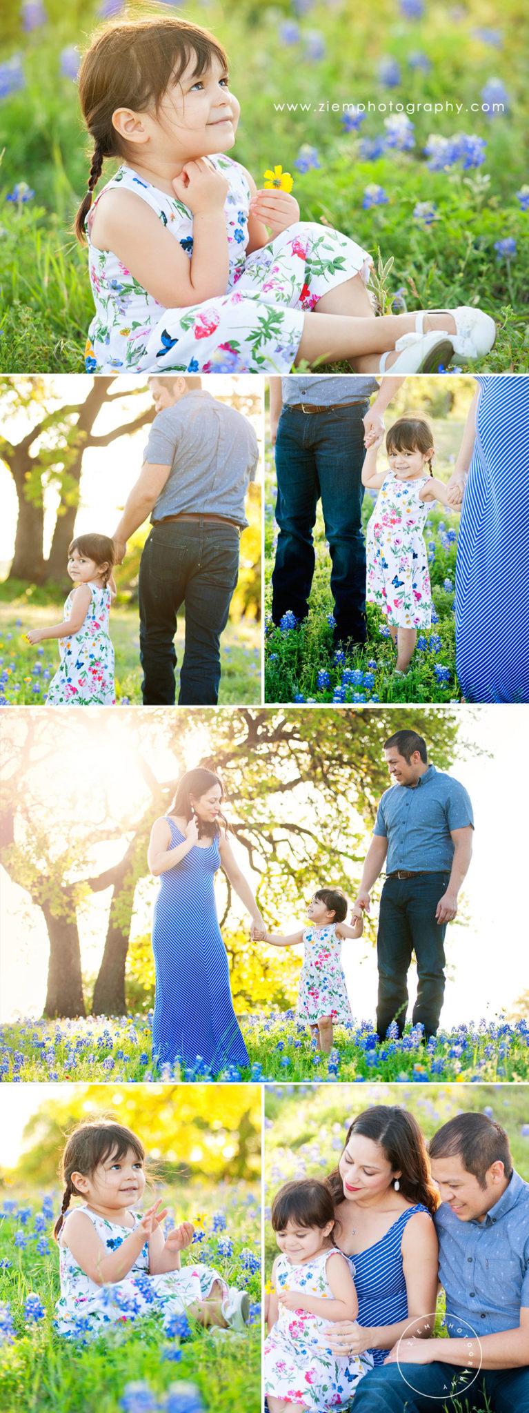 austin maternity photographers ziem photography