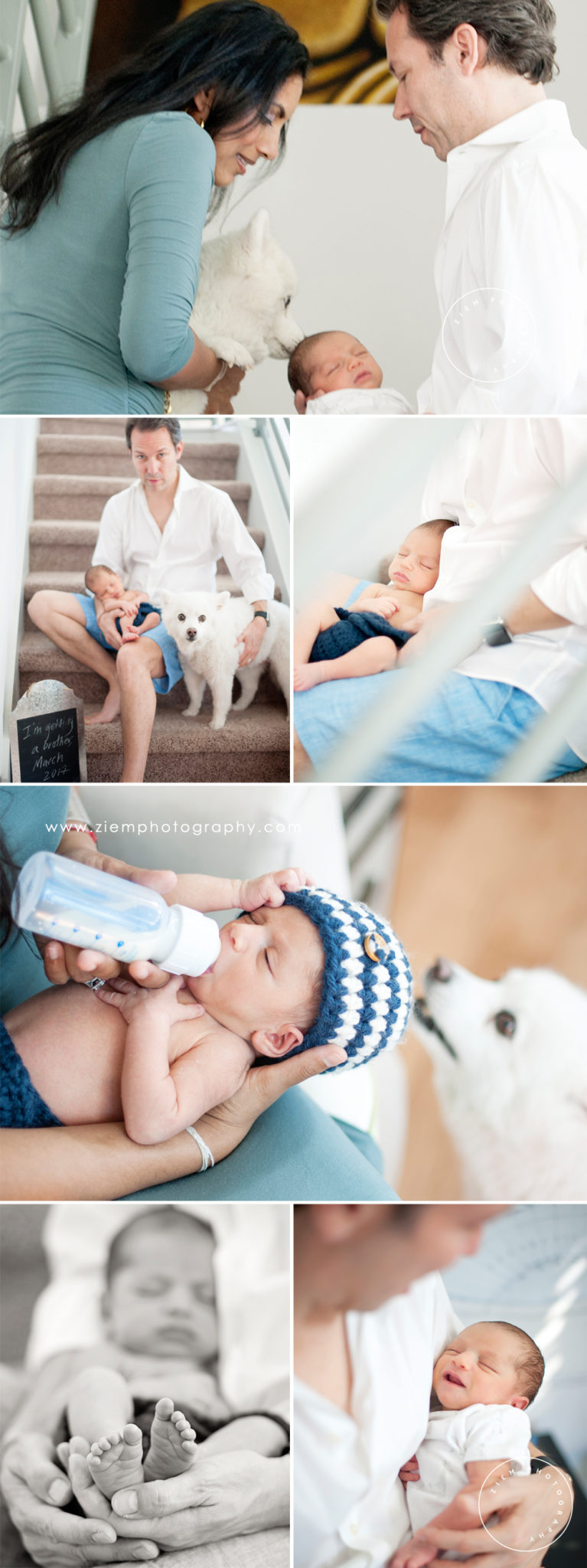 austin newborn photography shaw ziem photography